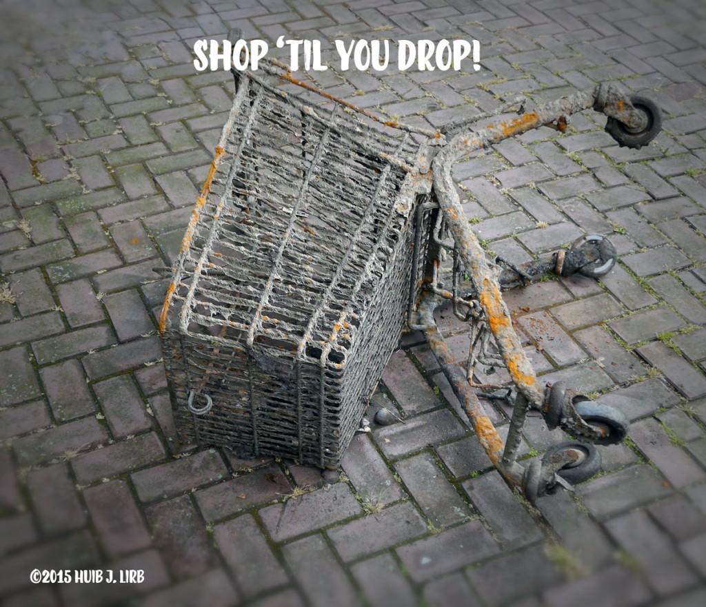 Shop 'til You Drop! Winkelwagentje op de kant langs het oosterdok in Amsterdam ©2015 Huib J. Lirb